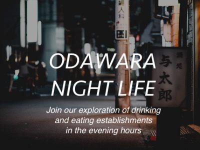 nightlife copy