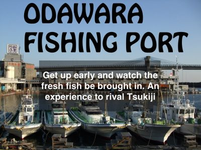 odawara port copy
